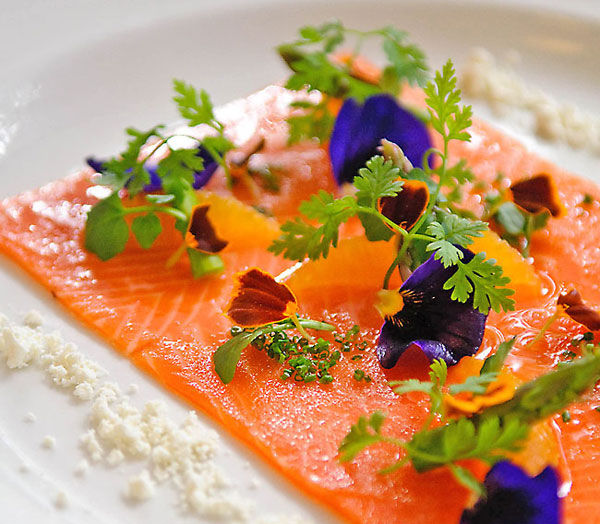Carpaccio of cured salmon with orange, asparagus, chives, stabilised ...
