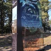 National Arboretum-8940