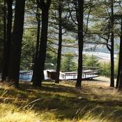 National Arboretum-9859