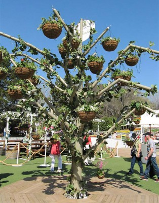 The hanging basket tree at the Lindemans Open Garden