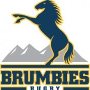 act-brumbies-logo-web-size-
