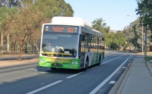 Action-bus-500x311