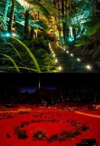 Botanic gardens by night