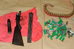 A double-barrelled 12-gauge shotgun and shells seized by police yesterday.