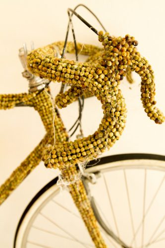 Bess Kenway, Pea Bike, 2013, peas and bicycle