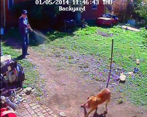 Policeman pepper sprays dog