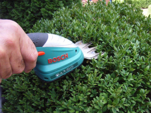 The Bosch Isio cordless shears… Chelsea Flower Show's 2014 Product of the Year.