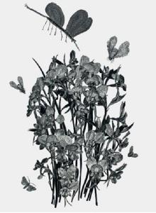 Work by Dianne Fogwell