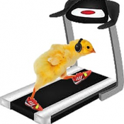 chick on treadmill with work out gear_DW