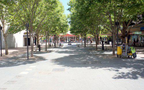 petrie plaza