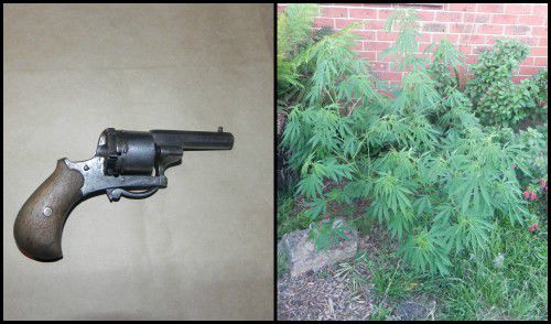 bonython drugs and gun