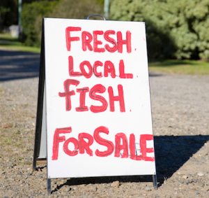 fish Sign_1