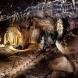 yarrangobilly-castle-cave