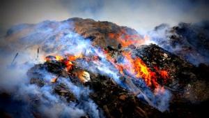 pialligo garbage fire