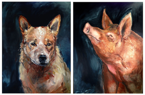 dogs and pigs