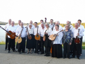 The Mandolin Orchestra