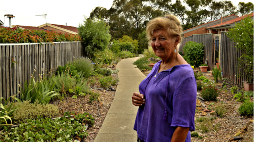 "Community gardener Heather Powell… ""I feel that communities have broken down quite a lot."" Photo by Danielle Nohra"