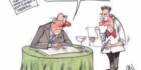Cartoon / Politicians' entitlements 2