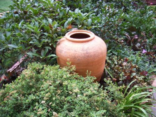 Garden Pots Canberra Gardening when things go to pot the pots get going canberra gardening when things go to pot the pots get going workwithnaturefo