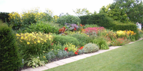 Perennial border at UK's Royal Horticultural Society garden.