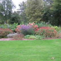 Cedric Bryant's garden