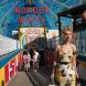 Wonder wheel movie