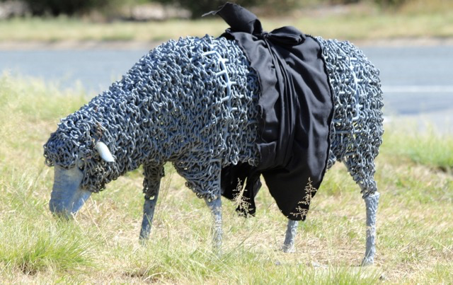 """Black sashes were draped across the """"Kambah Sheep"""" sculpture on Drakeford Drive. Photo by Mike Welsh"""