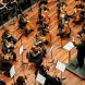The CSO at Llewellyn Hall