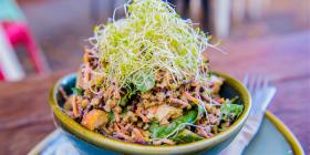 The Buddha Bowl salad… loaded with goodness. Photo by Ana Stuart