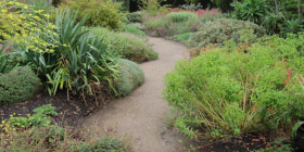 The Lambley Nursery dry garden in Victoria.
