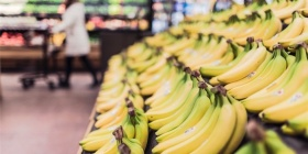 fruits-grocery-bananas-market-1