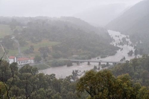 The swollen Murrumbidgee River near Cotter Dam. Photo by Silas Brown