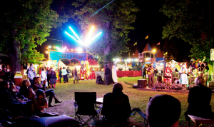 The Village sideshow & stage site