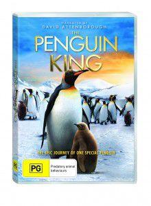 TPK0101_PENGUIN_KING_3D_THE_DVD_SLICK_3D_PACKSHOT (1)