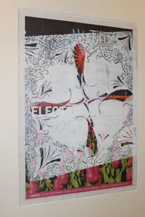 "Detail from Morgan Alexander's ""Grevillea Diminuta"" Lino print on newspaper."