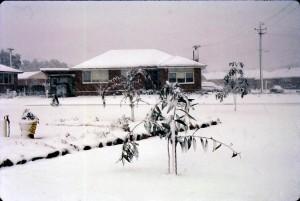 Snow 1965