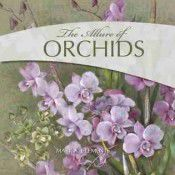 the-allure-of-orchids