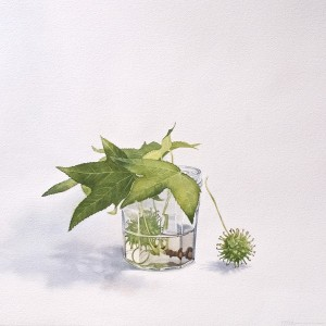 Tiffanie Brown, Leaf, seed and jam jar, 2014