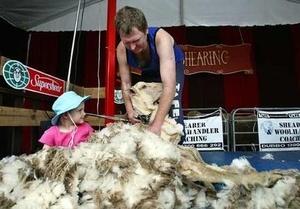 sheepshearing_wideweb__430x300