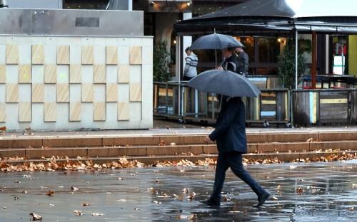 umbrellas in garema place