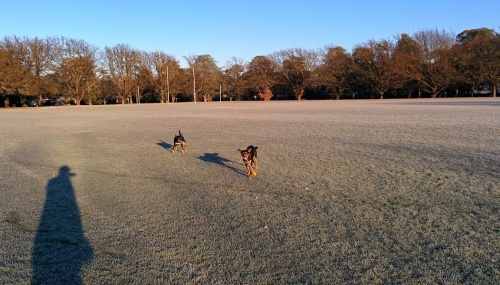 frost and kelpies