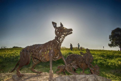 Sculptpr Ross Fairley's family of thylacines. Photo by Alex Tewes