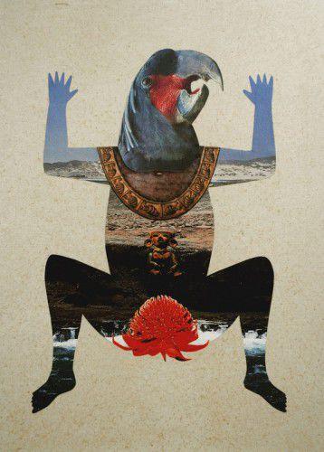 'Black Waratah', Louise Upshall, mixed media, 2014