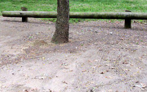 root damage