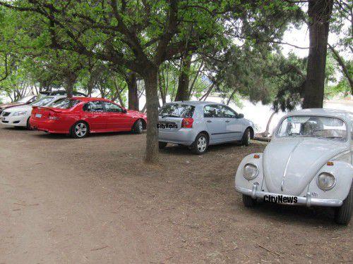 treepark