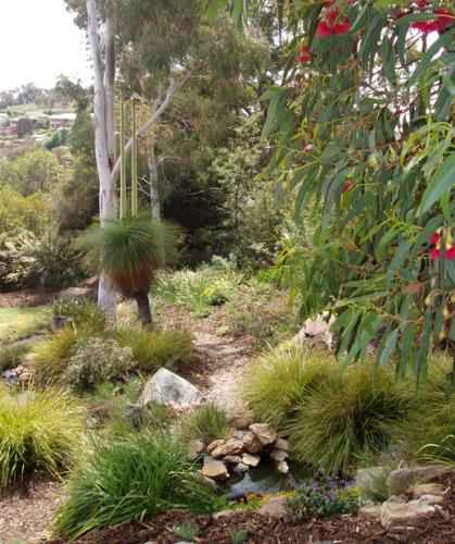 Diana Bennett's garden in Cawell.