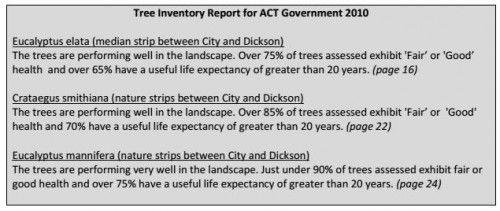 tree report