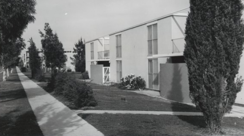 The Australian News and Information Bureau's 1963 photo of Northbourne Avenue flats. Photo National Library of Australia