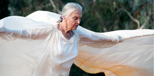 Australian Dance Theatre founder Elizabeth Cameron Dalman… still dancing at 81.