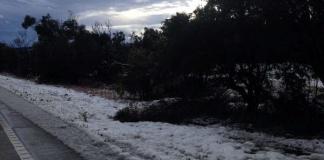 joy's snow pic